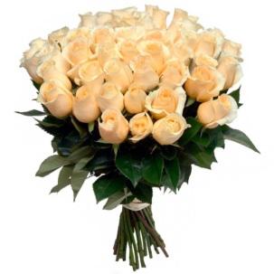 Розы Голландия кремовые